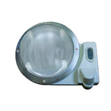 White  Motion  Round Scare Light