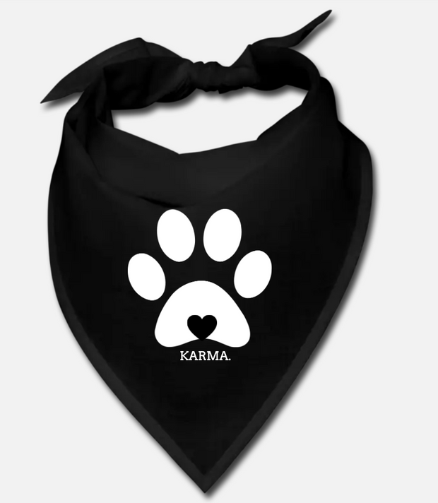 Karma Project Matching Pet/Owner Set - RARE.