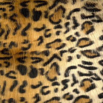 Gold Leopard Print Faux Fur Fabric - Fashion Fabrics Los Angeles