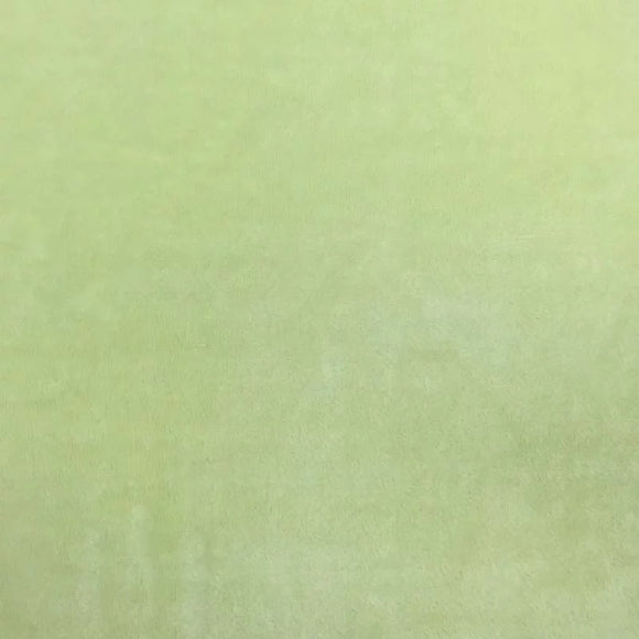Sage Green Smooth Minky Faux Fur Fabric