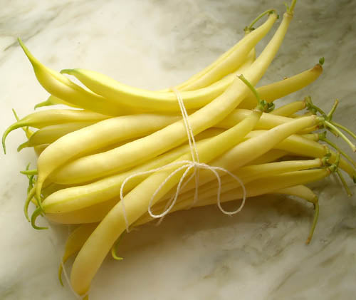 BIG PAK: Yellow Wax Bean: Topnotch Golden Wax #44
