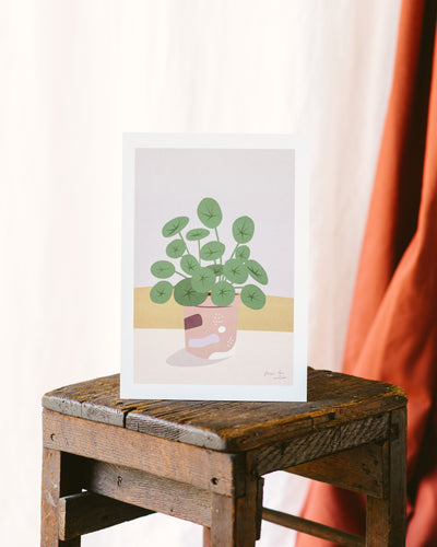 AFFICHE PILEA PEPEROMIOIDES