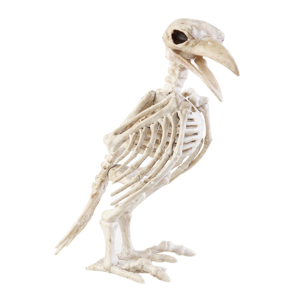 Halloween Crazy Bone Skeleton Raven