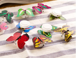 Creative Small Fancy Lantern Butterfly LED Lighter