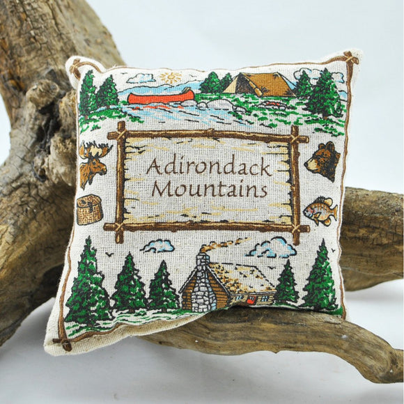 Adirondack Mountains Rustic Frame Balsam Pillow