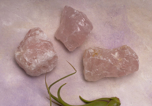 Rough Rose Quartz - Amy Margaret