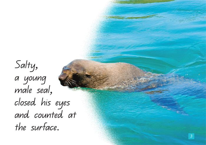 A Steve Parish Kids Story Book Seeking Seals-Pascal Press-booksrusandmore