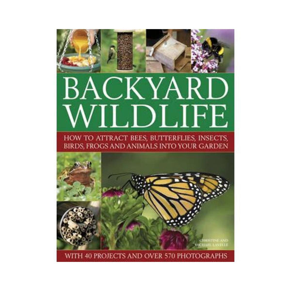 Backyard Wildlife-Clifford Remainders-booksrusandmore