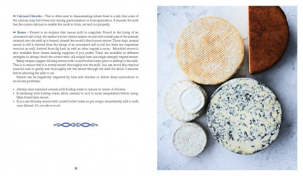 Curd & Crust Artisan Cheese And Bread Making by Tamara Newing-New Holland-booksrusandmore