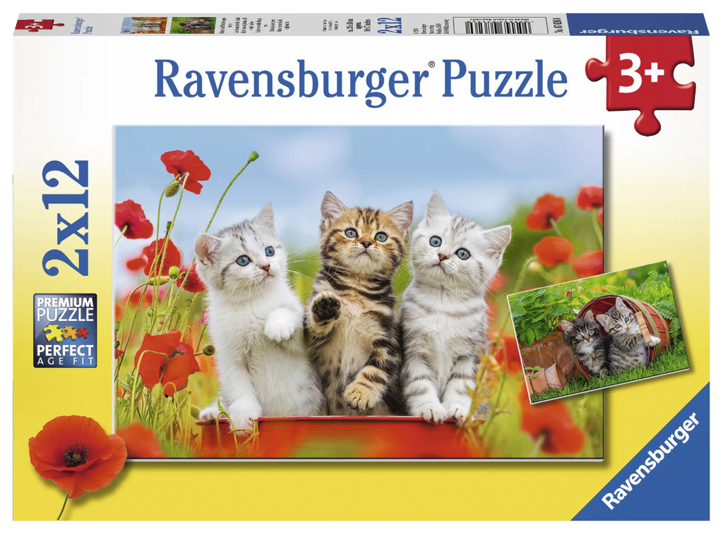 Ravensburger 2 x 12pc Puzzles Kitten Adventures-Modern Brands-booksrusandmore