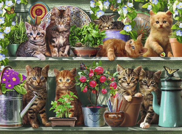 Ravensburger 500pc Puzzle Cats on the Shelf-Modern Brands-booksrusandmore