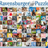 Ravensburger 1500pc Puzzle 99 Cats-Modern Brands-booksrusandmore