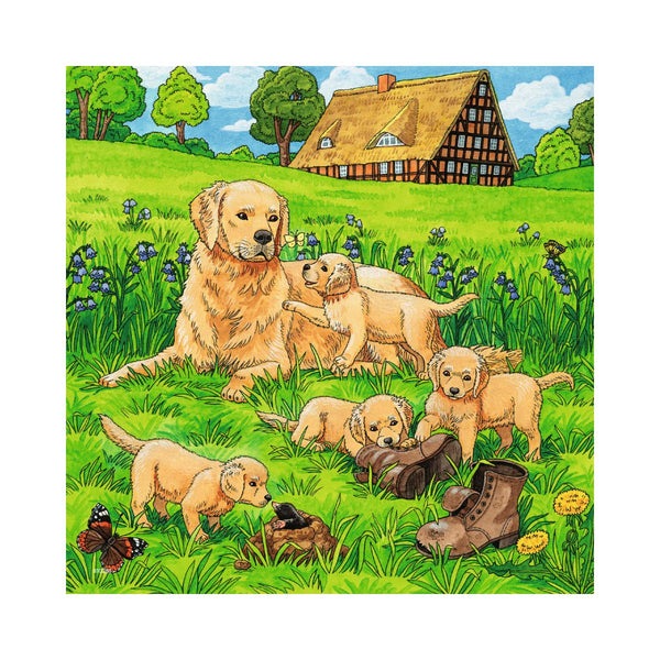 Ravensburger 3 x 49pc Puzzles Cats And Dogs-Modern Brands-booksrusandmore
