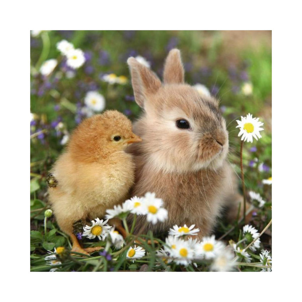 Ravensburger 3 x 49pc Puzzles Cute Bunnies-Modern Brands-booksrusandmore