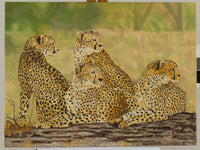 Cheetah Oil Painting