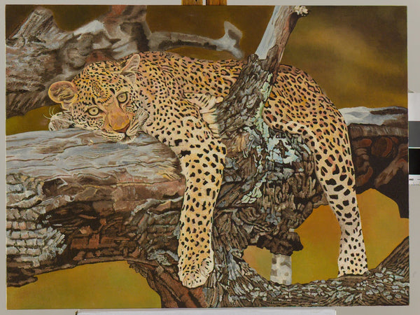 Leopard Sleeping in a Tree Oil Painting