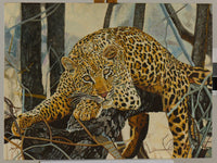 Leopard in a Tree Oil Painting