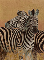 Two Zebra Oil Painting