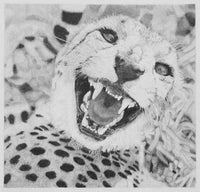 Cheetah Pencil Drawing