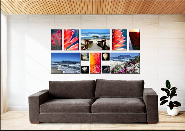 Prince Canvas Combo - 12 Piece Canvas & More