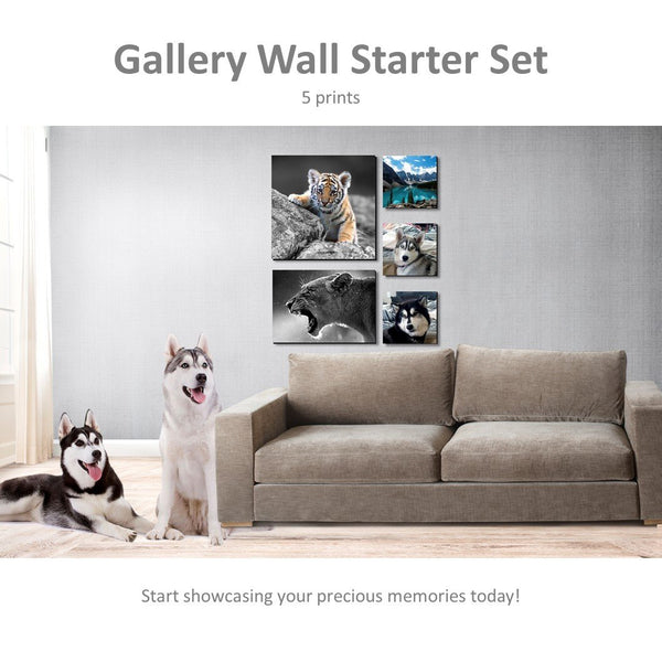 Gallery Wall Starter Set - 5 Piece Canvas Print deal Canvas & More