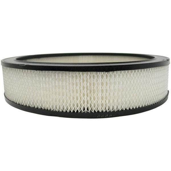 P607236 Donaldson Air Filter, Primary Round