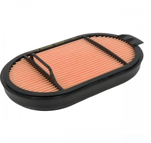 P615493 Donaldson Air Filter, Safety Obround.