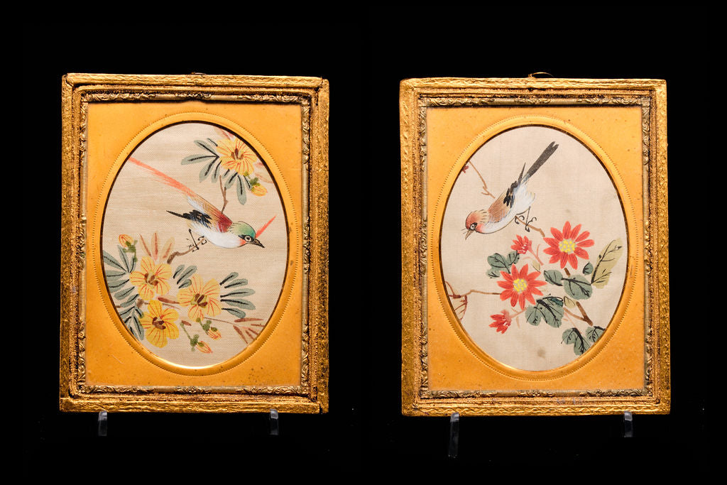 Victorian Bird Paintings in Gilt Frames.