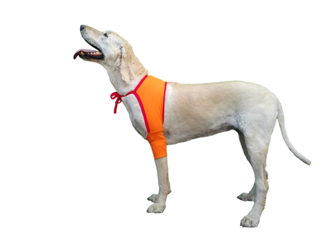 dog surgery recovery sleeve