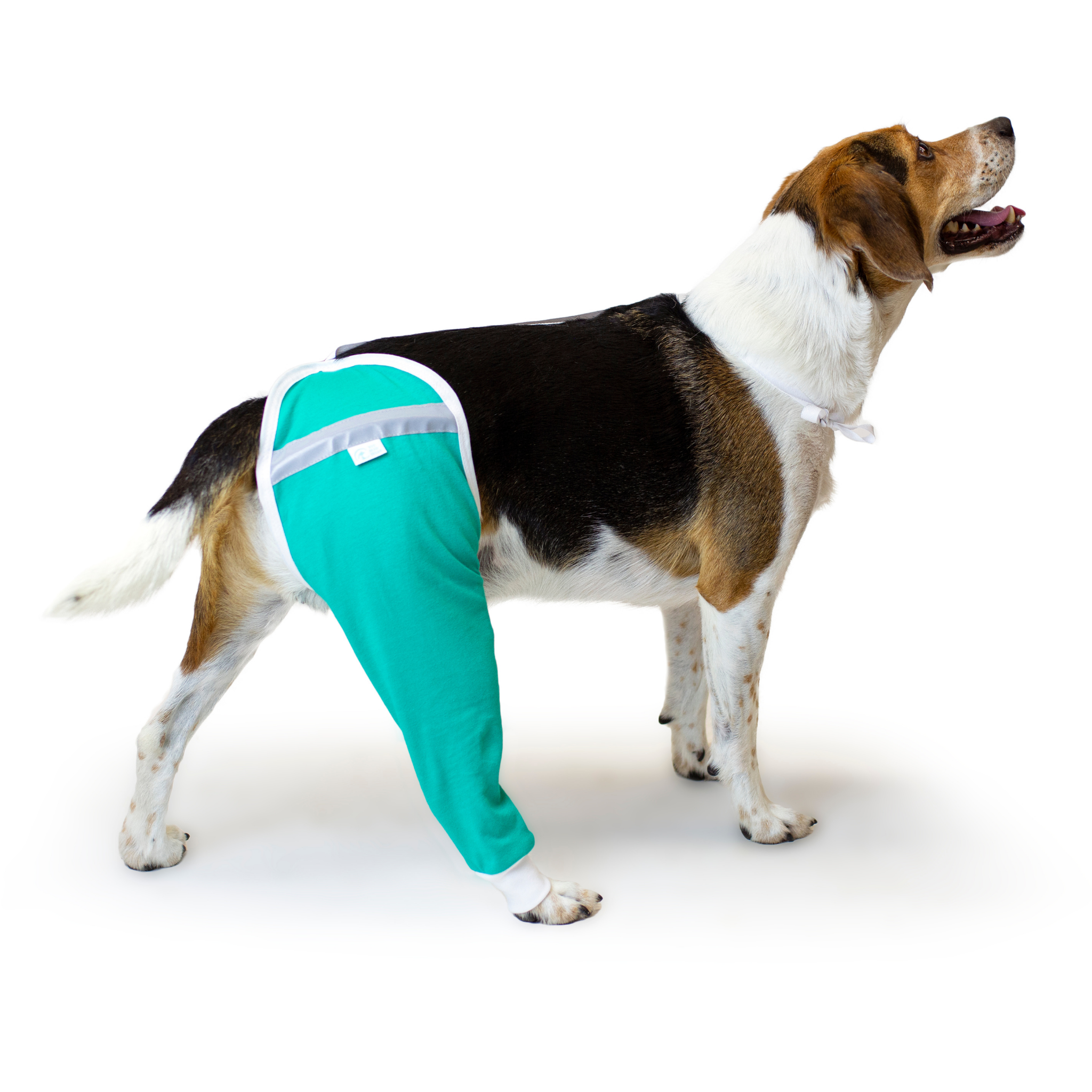 dog hip sleeve protective