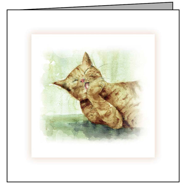 Animal Hospital Sympathy Card - Ginger Cat