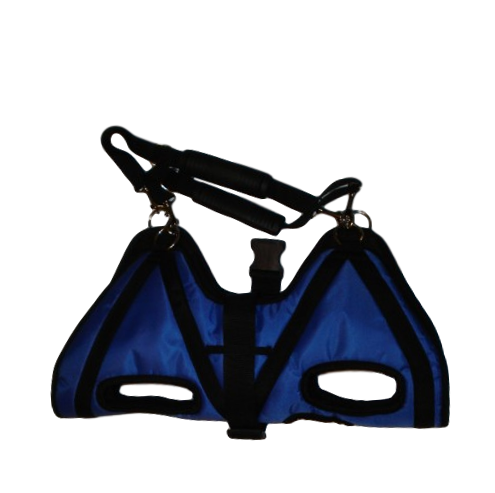 medium sized dog carrier blue strap short distances
