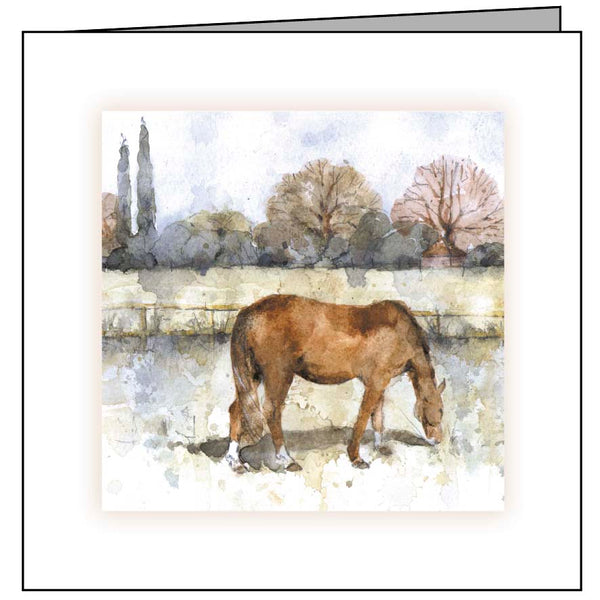 Large Animal Hospital Sympathy Card - Grazing Horse