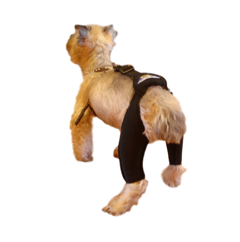 rehabilitation harness black for small animals hind support