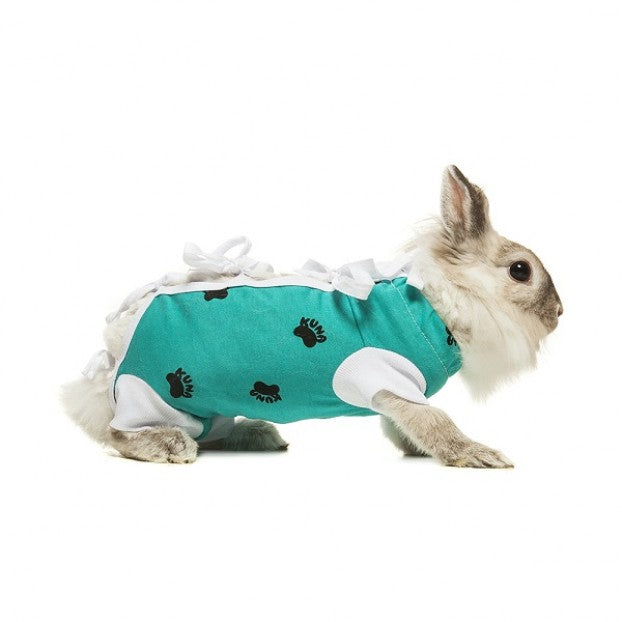 ecollar alternative recovery gown pets rabbit green