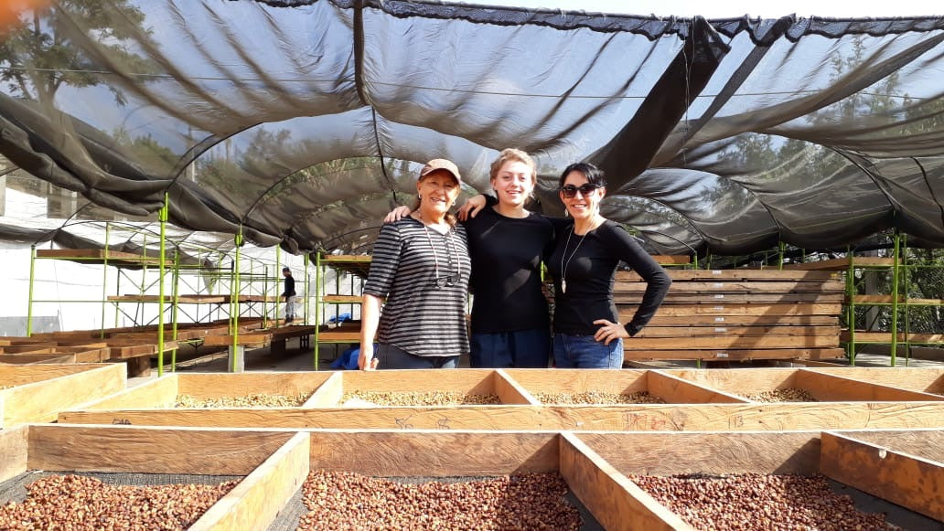 Raw Materials: Using Spanish as a Coffee Buyer
