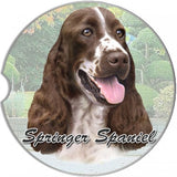 Springer Spaniel Car coasters