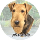 Airdale Car Coasters
