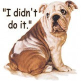 Didn't do it Bulldog T-shirt