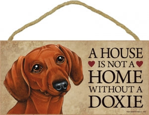 Dachshund- Brown- A house is not a home