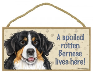 Bernese Mountain Dog- Plaques