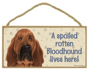 Bloodhound- A house is not a home Plaques
