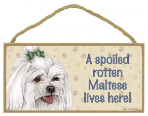 Maltese  - A House is not a home Plaque