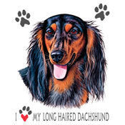 I love  Dachshund Shirt