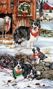 Border Collie Holiday Towel