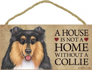 Collie- Tri color- A house is not a home