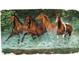 Horses in water t-shirt
