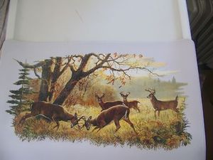 Buck placemats set of 4