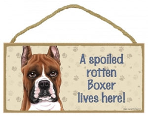 Boxer cropped- A house is not a home