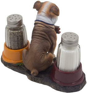 Bulldog salt & pepper shaker set